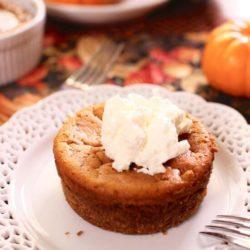 Pumpkin Pie For One | www.onedishkitchen.com