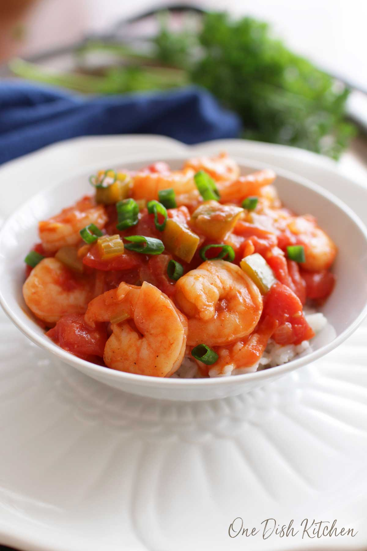 A closeup of a bowl of shrimp creole over white rice